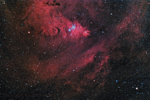 Cone Nebula with Christmas Tree Cluster and Surroundings East (Theli v3 NOMAD L=Red,RGB),                                Martin Junius