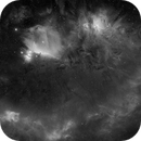 100'000 stars and 54 pannels mosaic for the Orion Challenge,                                David Lindemann