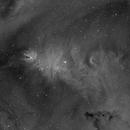 NGC2264,                                Chuck Faranda