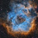 Rosette Nebula,                                Rob