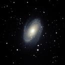 M81 - Bode's Galaxy,                                David Schlaudt