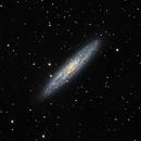 NGC 253,                                Coenie