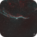 NGC6960 The Witches Broom,                                Michael Caller
