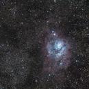 Lagoon and Trifid Nebula - M8 M20 - Budget Gear.,                                Mateus