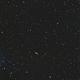 Galaxy field in virgo,                                Paolo Manicardi
