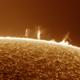 Sun activity 4/14/20,                                arjan brussee