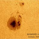 sunspots 1818,                                Paolo Contini