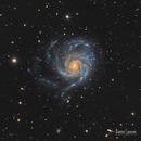 Messier 101,                                Damien Cannane