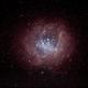 Rosette Nebula,                                Pedalstartmyheart