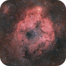 Elephant Trunc Nebula Complex (IC1396),                                pete_xl