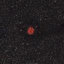 IC5146 (C19) Cocoon Nebula and Barnard 168,                                brad_burgess