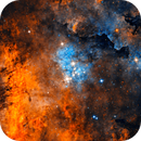 NGC 6910 Cluster in the Sadr region,                                jdowning