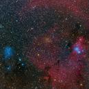 """NGC 2261, NGC 2264, IC 2169 - The Cone Nebular, Christmas Tree Cluster et al.,                                Sebastian """"BastiH"""" Hinz"""