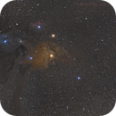 Rho Ophiuchi Area,                                Stacy Spear