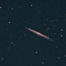 NGC 5907,                                Bob Gillette