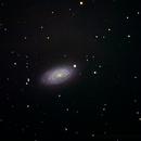 M63 - Sunflower Galaxy,                                Howie Silleck