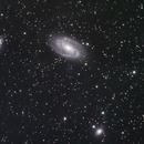 Bode's Nebula - M81,                                Don Walters