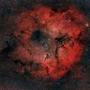 IC 1396 - Vdb 142,                                GALASSIA 60