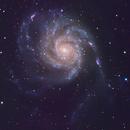 M101,                                PatrickV