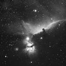 Horsehead Nebula (HA narrowband),                                Michelle Bennett