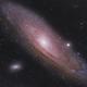 Andromeda,                                Marlon