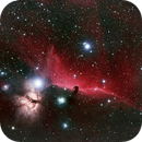 The Horsehead Nebula, HaLRGB, 2020 version,                                riot1013