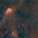 NGC 7380, the Wizard Nebula Area, HOO,                                Stephen Garretson