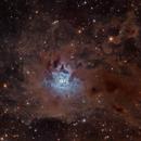 NGC 7023,                                Marc Ricard