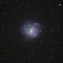 NGC5068 rarely imaged,                                Don Pearce