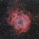 Rosette Nebula in LRGB,                                Johnny Qiu