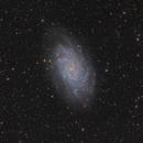 Messier 33,                                Simon