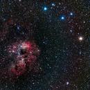 NGC 1893 - Open Cluster + Nebula,                                Steven E Labkoff