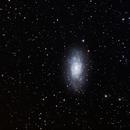 NGC 2403,                                Dave59