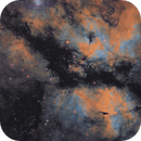 IC 1318 The Butterfly Nebula Hubble Pallet.,                                Marc Verhoeven