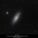 NGC 2841,                                Rauno Päivinen