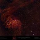 Sh2-229 - IC 405 - Flaming Star Nebula in HSO,                                Uwe Deutermann