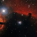 Horse head nebula,                                paddy36