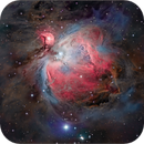 M-42 (Orion Nebula),                                Randal Healey