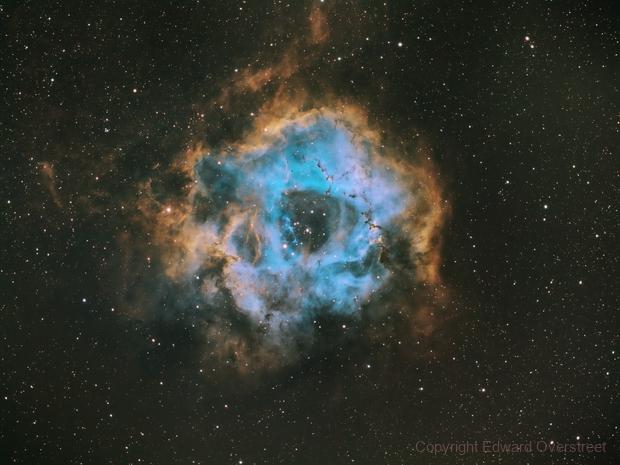 Rosette NGC2238,                                Edward Overstreet