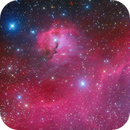 IC 2177 The Seagull Nebula,                                Astro_m