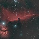 Horsehead Nebula,                                LittleBlueBug