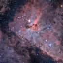 NGC 3372 - Carina Nebula,                                Martin Junius