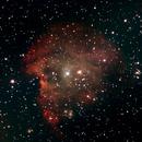 NGC 2175,                                raffaele de blasio