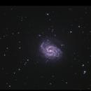 NGC4535 - The Lost Galaxy,                                Göran Nilsson