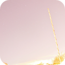 Light Pollution,                                Dylan Woodbrey