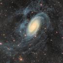 Messier 81 Visual + HI emission,                                Giuseppe Donatiello