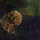 IC443 Jelly Fish Nebula,                                niteman1946