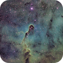 IC1396 Elephant Trunk SHO,                                Jonathan Young