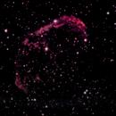 NGC 6888 the crescent nebula,                                Tom Gray