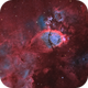 "IC 1795 - The Fishhead Nebula ""Natural"" Version,                                Alan Pham"
